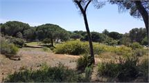 Building-plot in Marbesa - Marbella